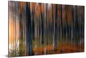 Schilderachtige weergave van de boomstammen van de Redwood forest in China Aluminium 60x40 cm - Foto print op Aluminium (metaal wanddecoratie)