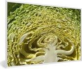 Foto in lijst - Een doorsnede van een mergkool fotolijst wit 60x40 cm - Poster in lijst (Wanddecoratie woonkamer / slaapkamer)