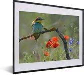 Foto in lijst - Een Bijeneter tussen de mooie bloemen fotolijst zwart met witte passe-partout 50x40 cm - Poster in lijst (Wanddecoratie woonkamer / slaapkamer)