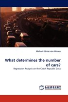 What Determines the Number of Cars?