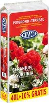 Geranium en surfinia potgrond 40L+4L gratis