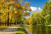 Papermoon River in Autumn Park Vlies Fotobehang 350x260cm 7-Banen