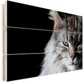 Portret van een grijs gekleurde Maine Coon kat Vurenhout met planken 120x80 cm - Foto print op Hout (Wanddecoratie)