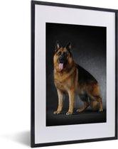 Foto in lijst - Portret van een Duitse Herder met zwarte achtergrond fotolijst zwart met witte passe-partout 40x60 cm - Poster in lijst (Wanddecoratie woonkamer / slaapkamer)