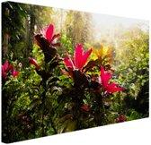 Prachtige tempel middenin de jungle Canvas 120x80 cm - Foto print op Canvas schilderij (Wanddecoratie woonkamer / slaapkamer)
