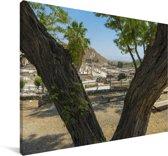 Foto door de bomen van Beit She'an in Israël Canvas 60x40 cm - Foto print op Canvas schilderij (Wanddecoratie woonkamer / slaapkamer)