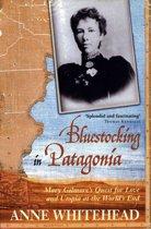 Bluestocking in Patagonia