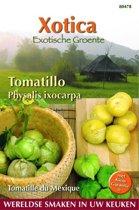 Buzzy® Xotica Tomatillo