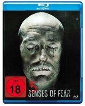 5 Senses of Fear (blu-ray)