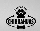 autosticker I love my chihuahua