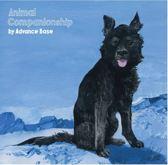 Animal.. -Coloured-
