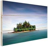Bosrijk eiland foto Hout 120x80 cm - Foto print op Hout (Wanddecoratie) / Zee en Strand