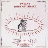 Twelve Tribe Of Israel Anthology