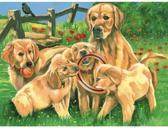 Schilderen op nummer - les labradors