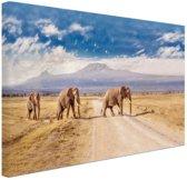 Drie overstekende olifanten Canvas 30x20 cm - Foto print op Canvas schilderij (Wanddecoratie)