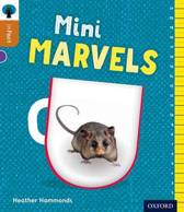 ORT:INFACT:L8 MINI MARVELS