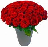50 rode rozen boeket