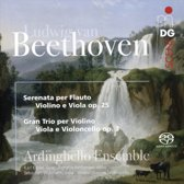 Ludwig Van Beethoven: Serenata Per Flauto Violino E Viola, Op. 25