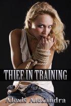 Thief in Training
