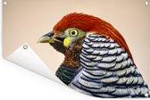 Close-up van een fazant die over het landschap uitkijkt Tuinposter 90x60 cm - Tuindoek / Buitencanvas / Schilderijen voor buiten (tuin decoratie)