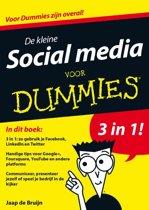 De kleine social media voor Dummies