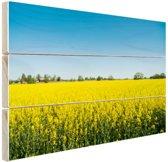 Oliezaadveld foto Hout 30x20 cm - klein - Foto print op Hout (Wanddecoratie)