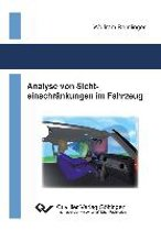 Analyse von Sichteinschränkungen im Fahrzeug
