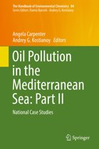 Oil Pollution in the Mediterranean Sea: Part II