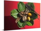 Betelnoten op groene bladeren tegen een rode achtergrond Aluminium 160x120 cm - Foto print op Aluminium (metaal wanddecoratie) XXL / Groot formaat!