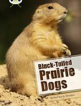 BC NF White B/2A Black-tailed Prairie Dogs