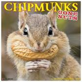 Chipmunks (Gone Nuts!) 2020 Wall Calendar