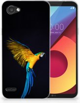 LG Q6   LG Q6 Plus TPU Hoesje Design Papegaai