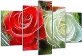 Glasschilderij Roos   Wit, Rood,   170x100cm 5Luik   Foto print op Glas    F001581