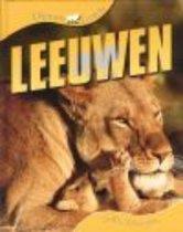 Dierenleven - Leeuwen