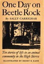 One Day On Beetle Rock