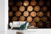 Fotobehang vinyl - Wijnvaten in een wijnkelder breedte 525 cm x hoogte 350 cm - Foto print op behang (in 7 formaten beschikbaar)