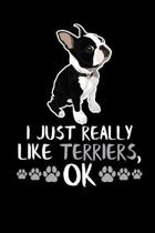 I Just Really Like Terriers, Ok