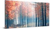 De mistige bossen van de Redwood forest bij zonsopgang in China Aluminium 160x80 cm - Foto print op Aluminium (metaal wanddecoratie)