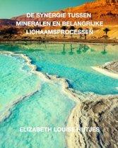 De synergie tussen mineralen en belangrijke lichaamsprocessen