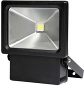 LED-SCHIJNWERPER VOOR BUITENSHUIS - 10 W - NEUTRAALWIT