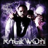 Only Built For Cuban Linx Ii