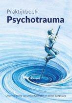 Praktijkboek psychotrauma