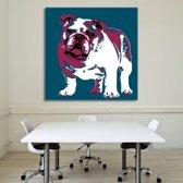 English Bulldog Art on Plexiglass 80/80cm