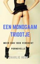 Het spannende seksleven van een monogame slet - Een Monogaam Triootje