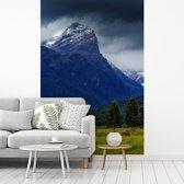Fotobehang vinyl - Weide in het Nationaal park Mount Aspiring in Nieuw-Zeeland breedte 190 cm x hoogte 280 cm - Foto print op behang (in 7 formaten beschikbaar)