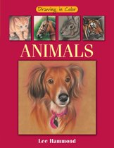 Download ebook Drawing in Color - Animals the cheapest