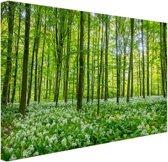 Groene bomen in het bos Canvas 120x80 cm - Foto print op Canvas schilderij (Wanddecoratie)