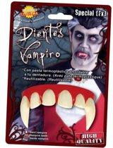 Halloween - Dracula tanden halloween verkleed accessoire voor volwassenen