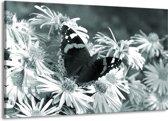 Schilderij | Canvas Schilderij Bloemen, Vlinder | Grijs, Groen, Zwart | 140x90cm 1Luik | Foto print op Canvas