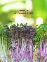 Growing micro greens: garden and dot grid paper, space for watering and growing notes